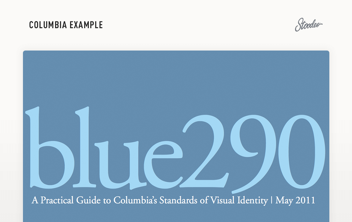 Brand Guideline Style Guide Tyler TX Columbia